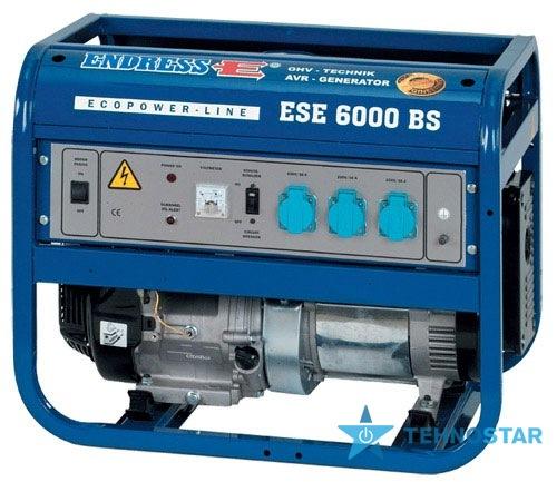 Фото - Электростанция Endress ESE 6000 BS